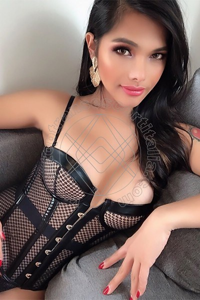 Mauy Asiatica PRATO 3896486569