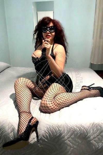 Aurelia REGGIO EMILIA 3771904473